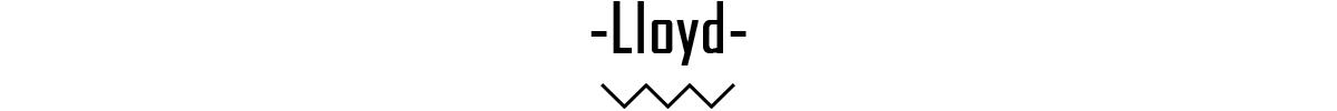 Lloyd banner 3